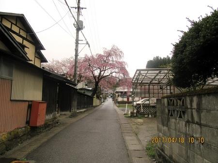 三春町a-2IMG_1047.jpg